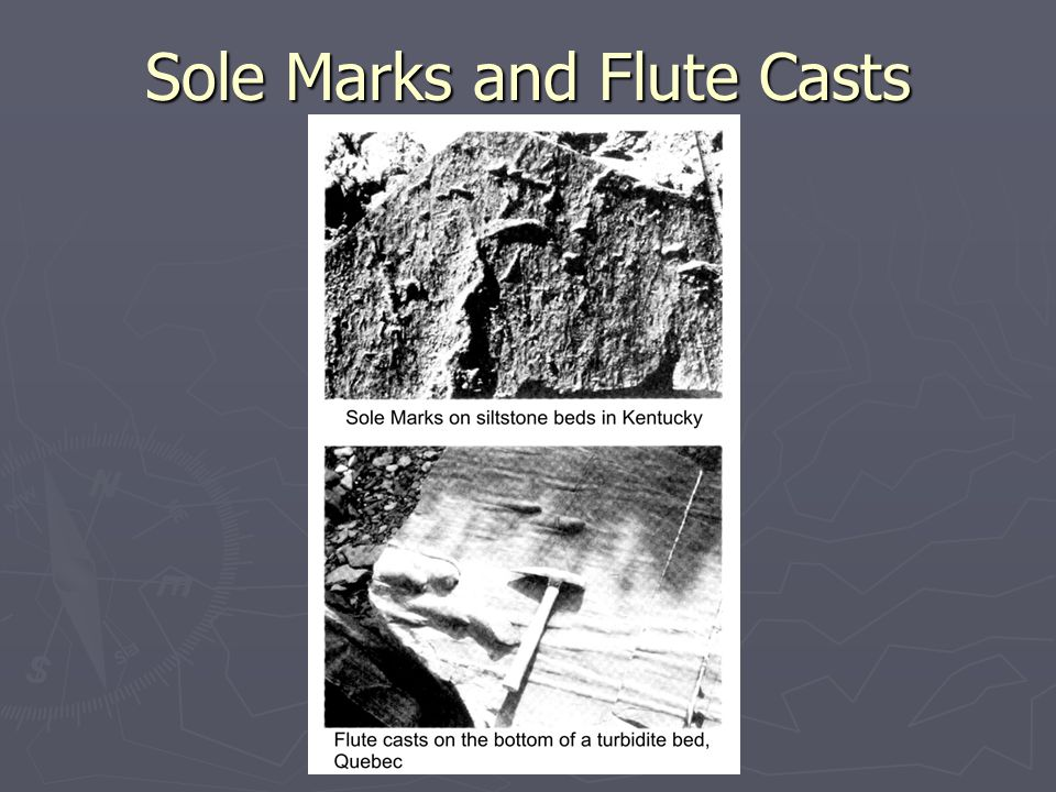 Sole Marks and Flute Casts