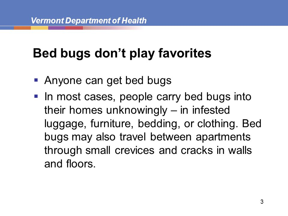 3 Bed bugs don't play favorites  Anyone can get bed bugs  In most cases, people carry bed bugs into their homes unknowingly – in infested luggage, f