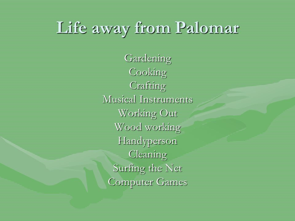 Life away from Palomar GardeningCookingCrafting Musical Instruments Working Out Wood working HandypersonCleaning Surfing the Net Computer Games