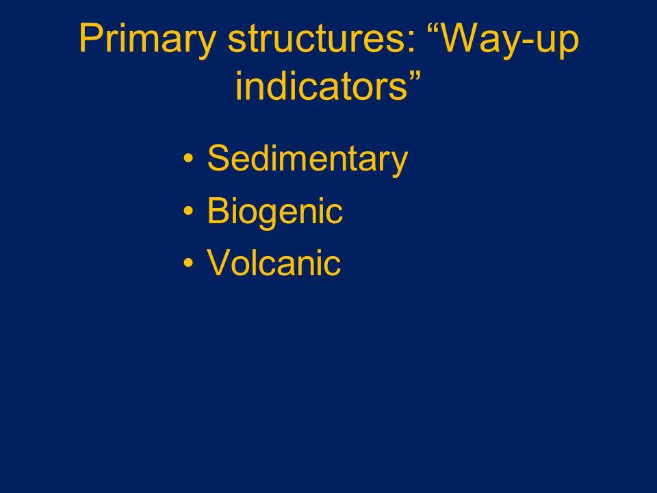 Primary structures: Way-up indicators Sedimentary Biogenic Volcanic