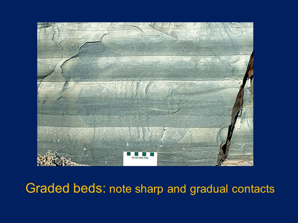 Graded beds: note sharp and gradual contacts