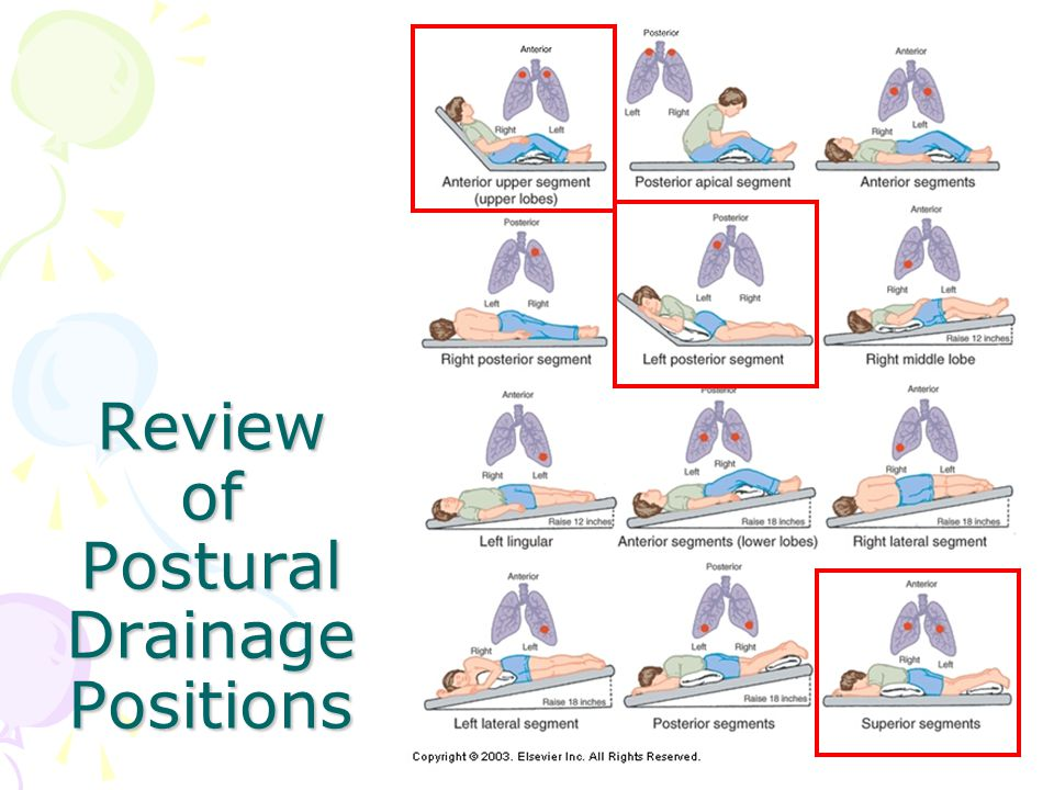 Review of Postural Drainage Positions