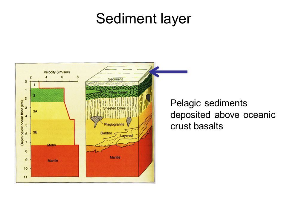 Sediment layer Pelagic sediments deposited above oceanic crust basalts