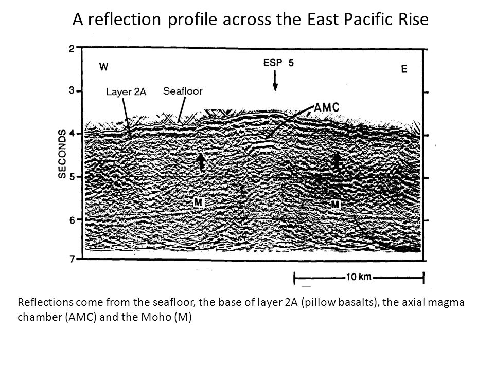 A reflection profile across the East Pacific Rise Reflections come from the seafloor, the base of layer 2A (pillow basalts), the axial magma chamber (AMC) and the Moho (M)