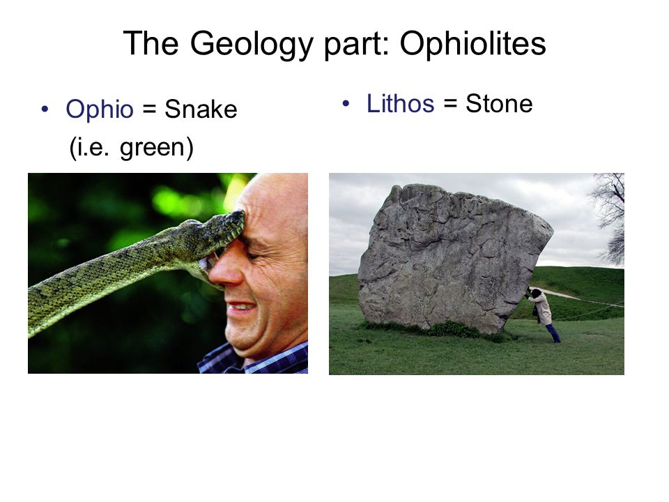 The Geology part: Ophiolites Ophio = Snake (i.e. green) Lithos = Stone