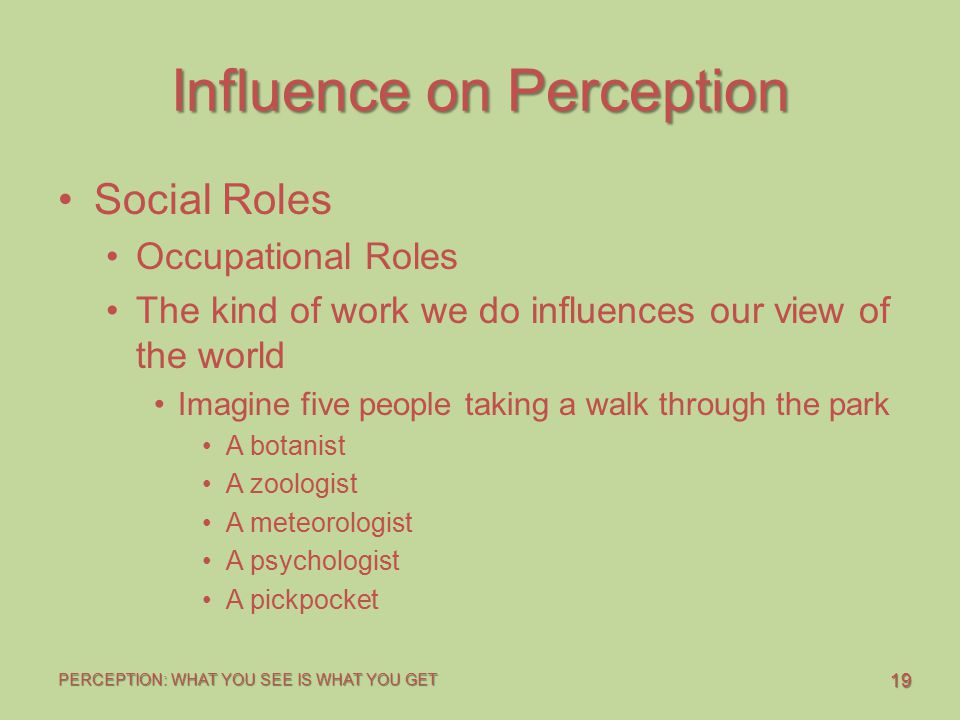 19 PERCEPTION: WHAT YOU SEE IS WHAT YOU GET Influence on Perception Social Roles Occupational Roles The kind of work we do influences our view of the world Imagine five people taking a walk through the park A botanist A zoologist A meteorologist A psychologist A pickpocket