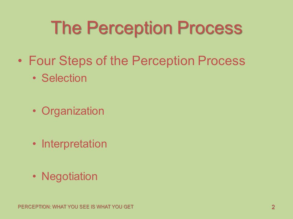 2 PERCEPTION: WHAT YOU SEE IS WHAT YOU GET The Perception Process Four Steps of the Perception Process Selection Organization Interpretation Negotiati