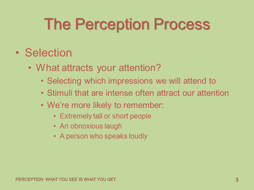 3 PERCEPTION: WHAT YOU SEE IS WHAT YOU GET The Perception Process Selection What attracts your attention? Selecting which impressions we will attend t