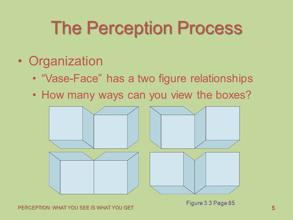 """5 PERCEPTION: WHAT YOU SEE IS WHAT YOU GET The Perception Process Organization """"Vase-Face"""" has a two figure relationships How many ways can you view t"""