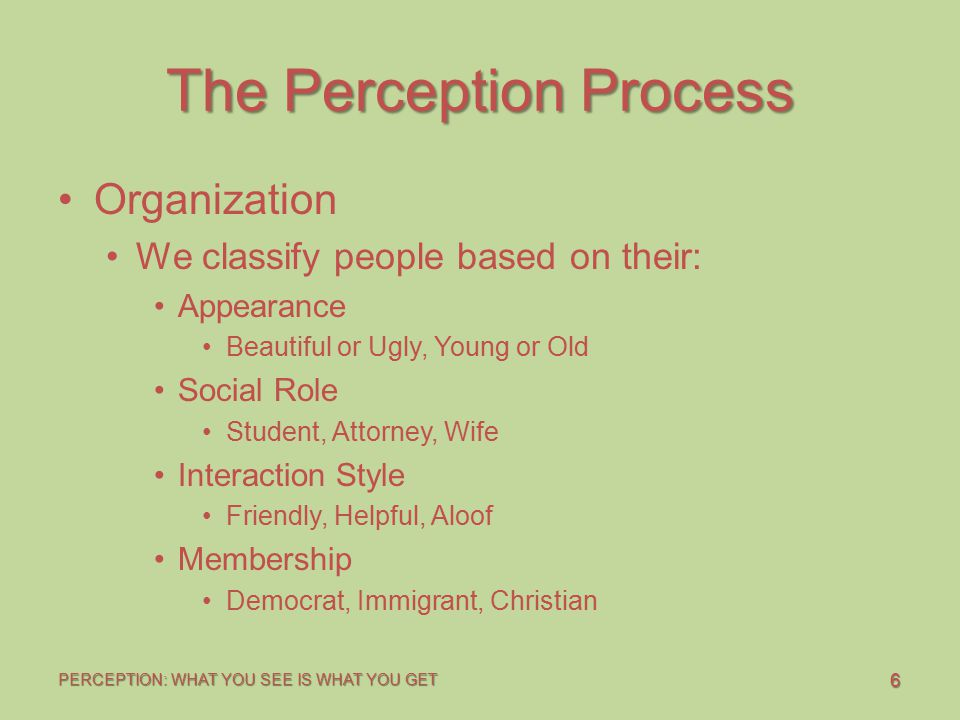 6 PERCEPTION: WHAT YOU SEE IS WHAT YOU GET The Perception Process Organization We classify people based on their: Appearance Beautiful or Ugly, Young or Old Social Role Student, Attorney, Wife Interaction Style Friendly, Helpful, Aloof Membership Democrat, Immigrant, Christian