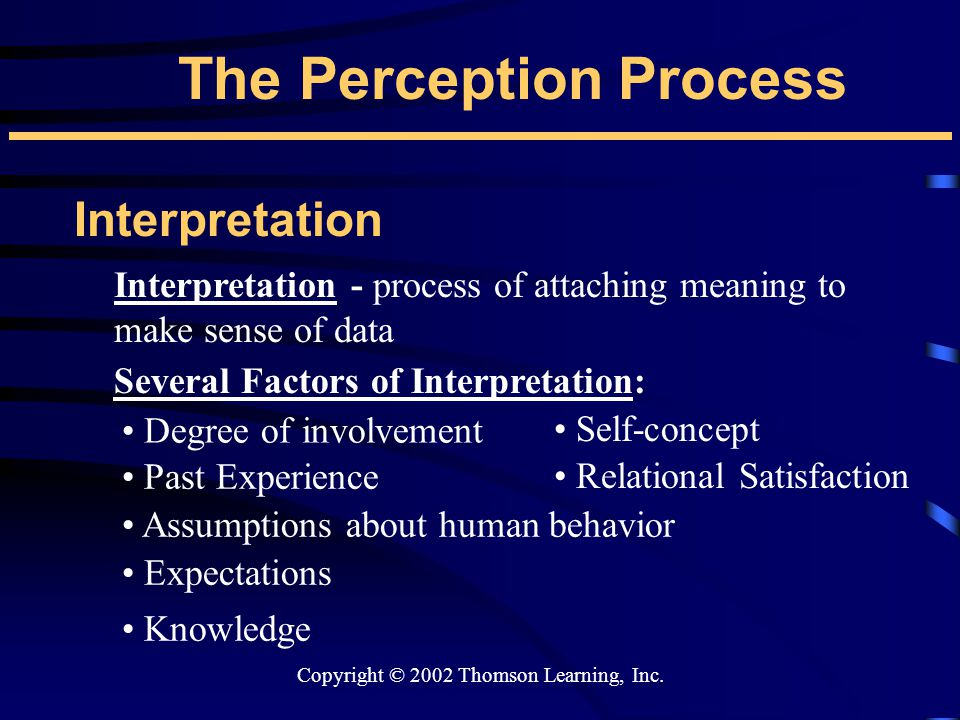 Copyright © 2002 Thomson Learning, Inc. The Perception Process Interpretation Interpretation - process of attaching meaning to make sense of data Seve