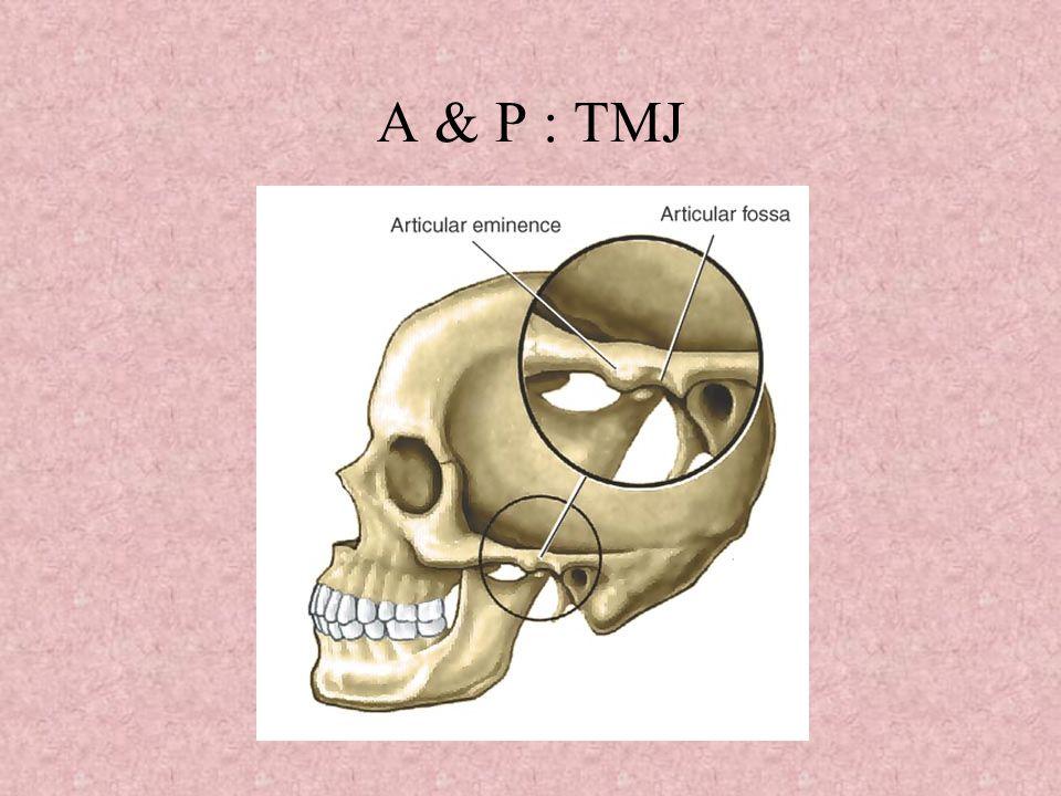 Pathophysiology Causes: Bruxism, Malocclusion, Arthritis, Trauma
