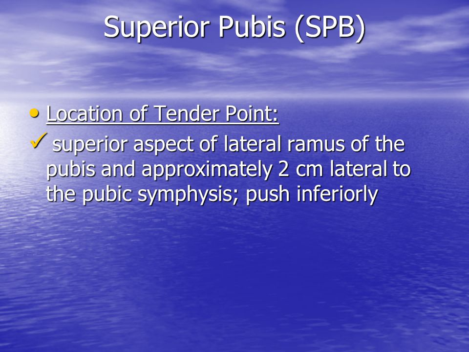 Superior Pubis (SPB) Location of Tender Point: Location of Tender Point: superior aspect of lateral ramus of the pubis and approximately 2 cm lateral to the pubic symphysis; push inferiorly superior aspect of lateral ramus of the pubis and approximately 2 cm lateral to the pubic symphysis; push inferiorly