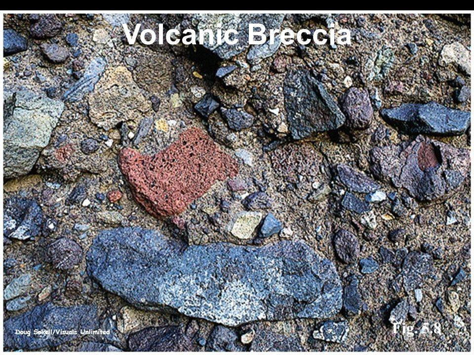 Doug Sokell/Visuals Unlimited Fig. 5.8 Volcanic Breccia
