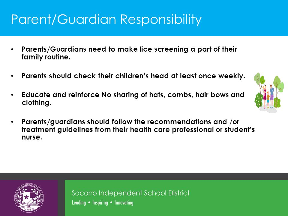 Parent/Guardian Responsibility Parents/Guardians need to make lice screening a part of their family routine.