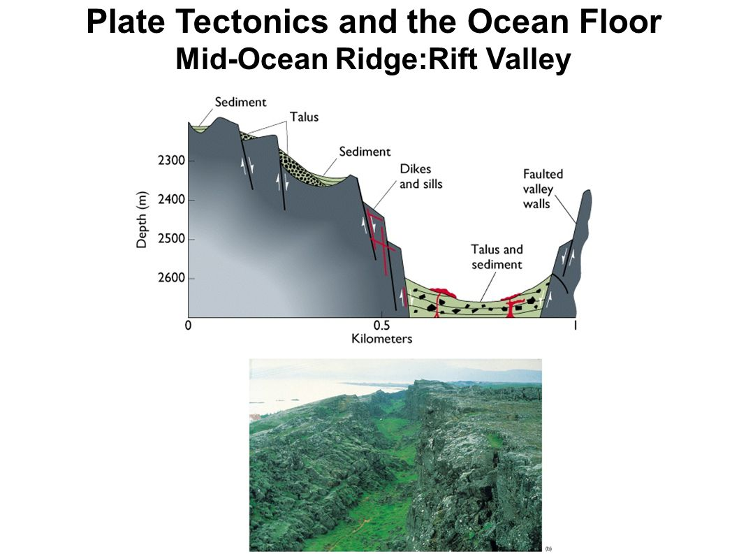 Plate Tectonics and the Ocean Floor Mid-Ocean Ridge:Rift Valley