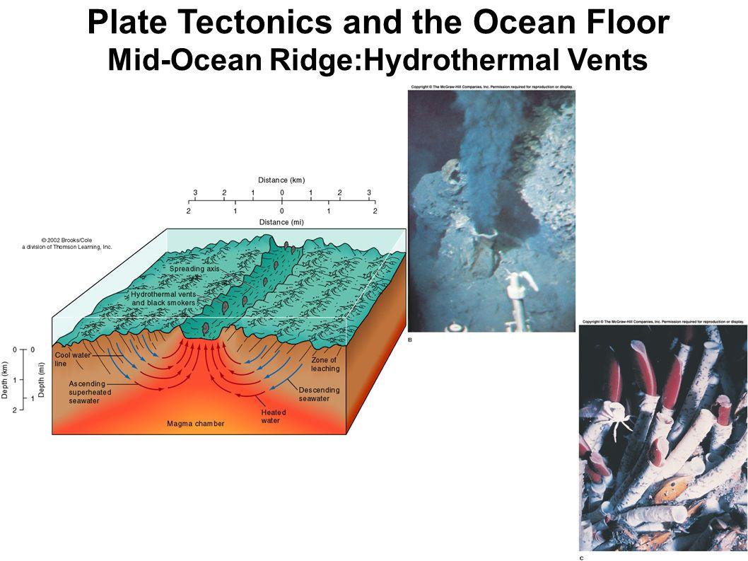 Plate Tectonics and the Ocean Floor Mid-Ocean Ridge:Hydrothermal Vents