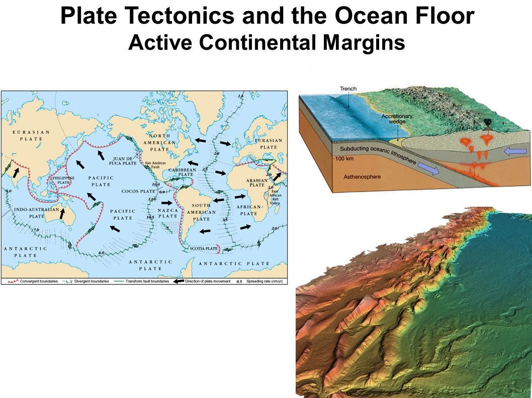 Plate Tectonics and the Ocean Floor Active Continental Margins