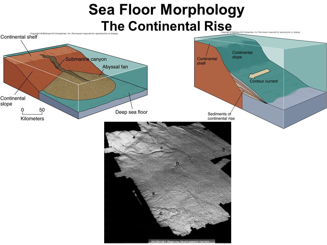 Sea Floor Morphology The Continental Rise