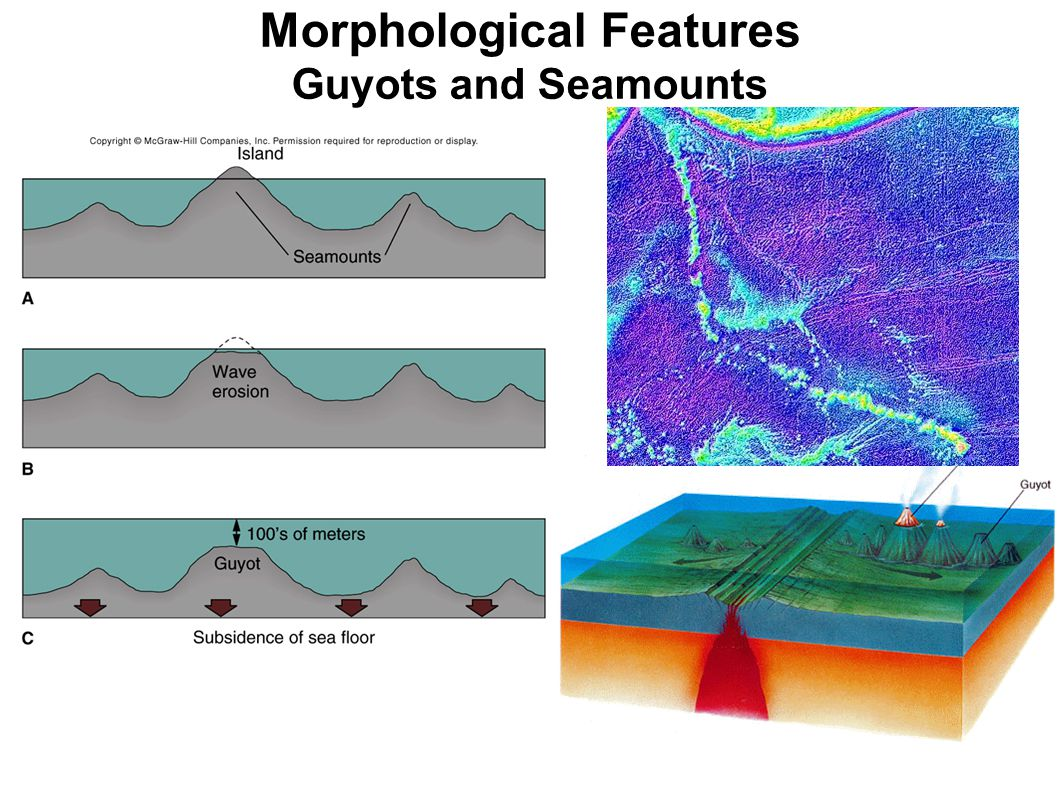 Morphological Features Guyots and Seamounts