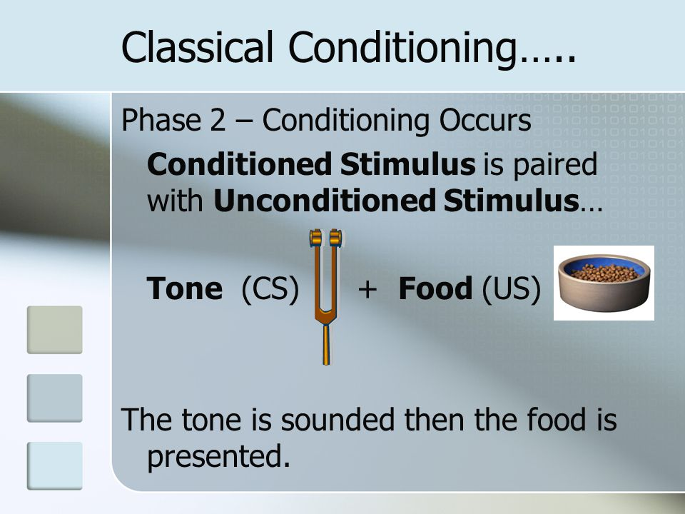 Classical Conditioning….. Phase 2 – Conditioning Occurs Conditioned Stimulus is paired with Unconditioned Stimulus… Tone (CS) + Food (US) The tone is