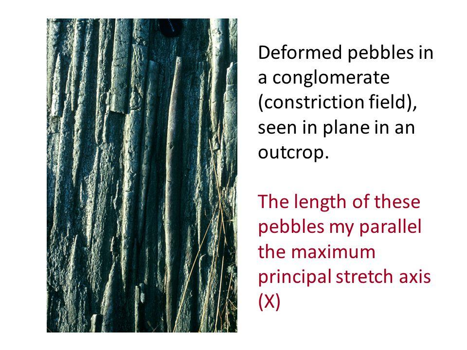 Deformed Trilobite http://courses.eas.ualberta.ca/eas421/lecturepages/strain.html