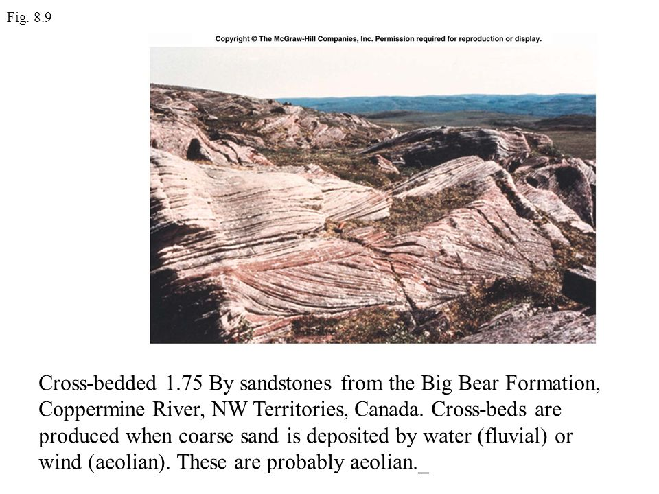 Fig. 8.9 Cross-bedded 1.75 By sandstones from the Big Bear Formation, Coppermine River, NW Territories, Canada. Cross-beds are produced when coarse sa