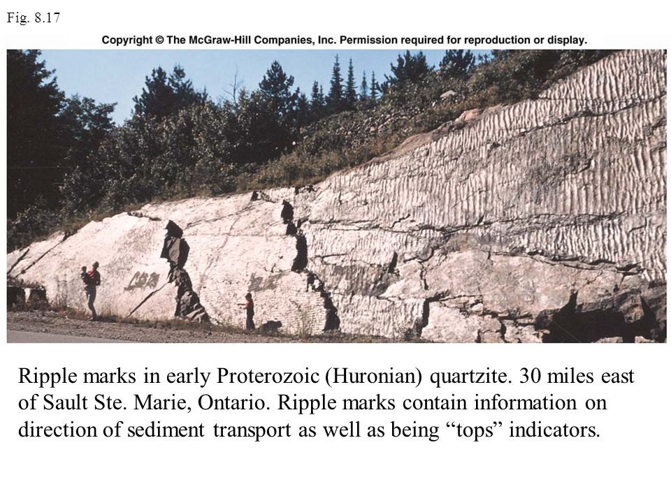 Fig. 8.17 Ripple marks in early Proterozoic (Huronian) quartzite. 30 miles east of Sault Ste. Marie, Ontario. Ripple marks contain information on dire