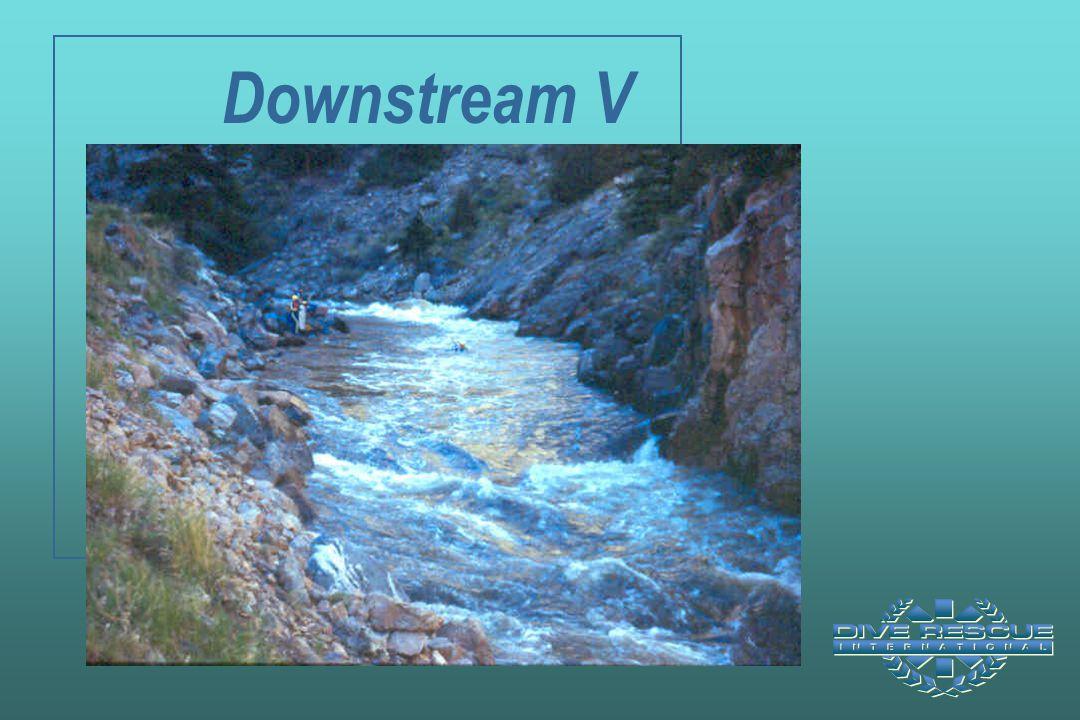 Downstream V
