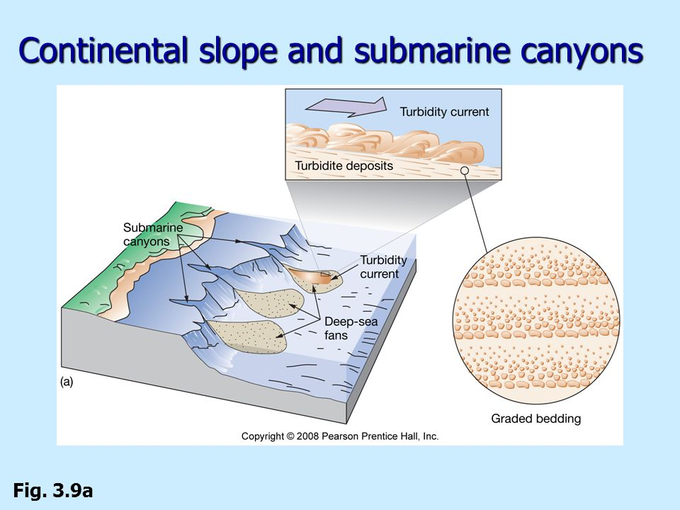 Continental slope and submarine canyons Fig. 3.9a