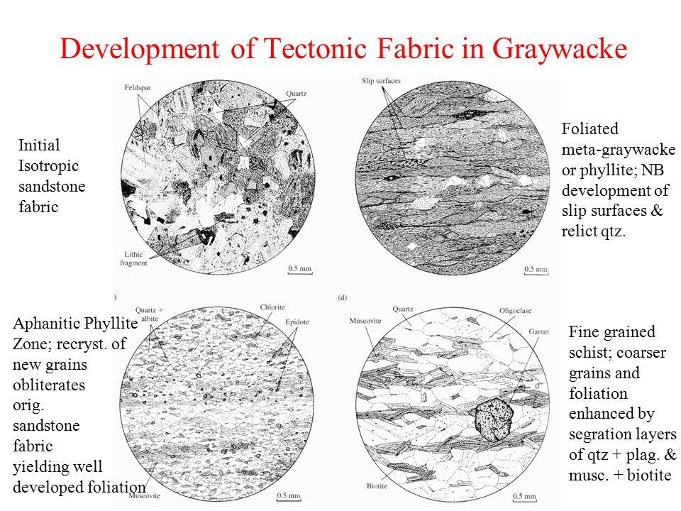 Development of Tectonic Fabric in Graywacke Initial Isotropic sandstone fabric Foliated meta-graywacke or phyllite; NB development of slip surfaces &