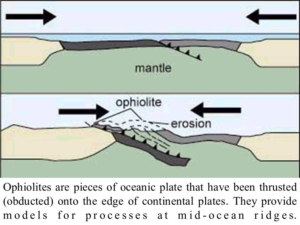 Ophiolites are pieces of oceanic plate that have been thrusted (obducted) onto the edge of continental plates. They provide models for processes at mi