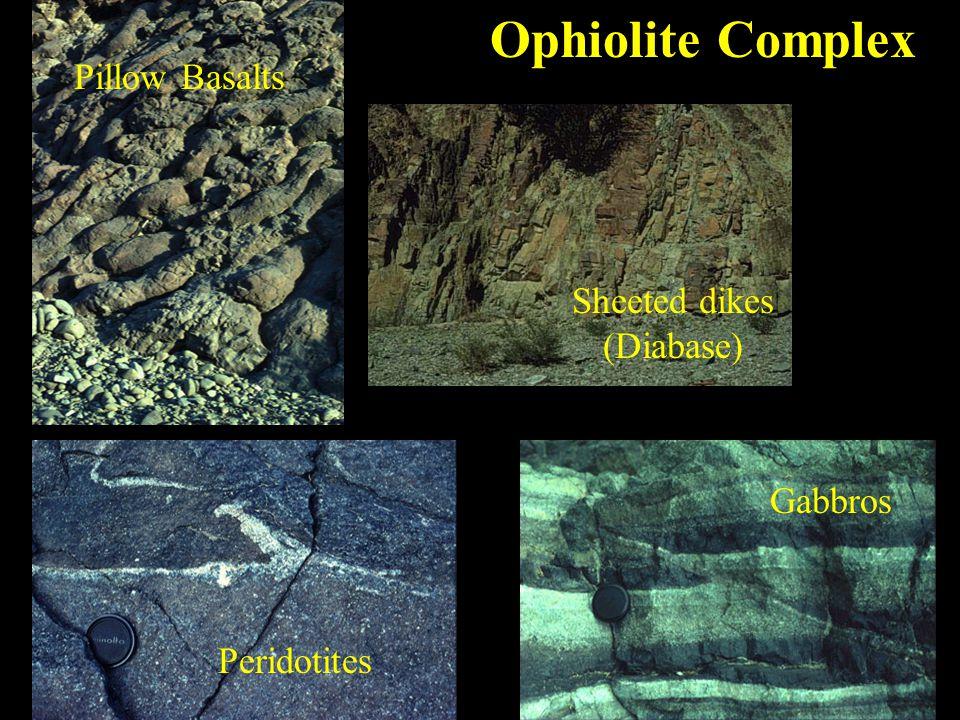 Ophiolite Complex Peridotites Sheeted dikes (Diabase) Gabbros Pillow Basalts