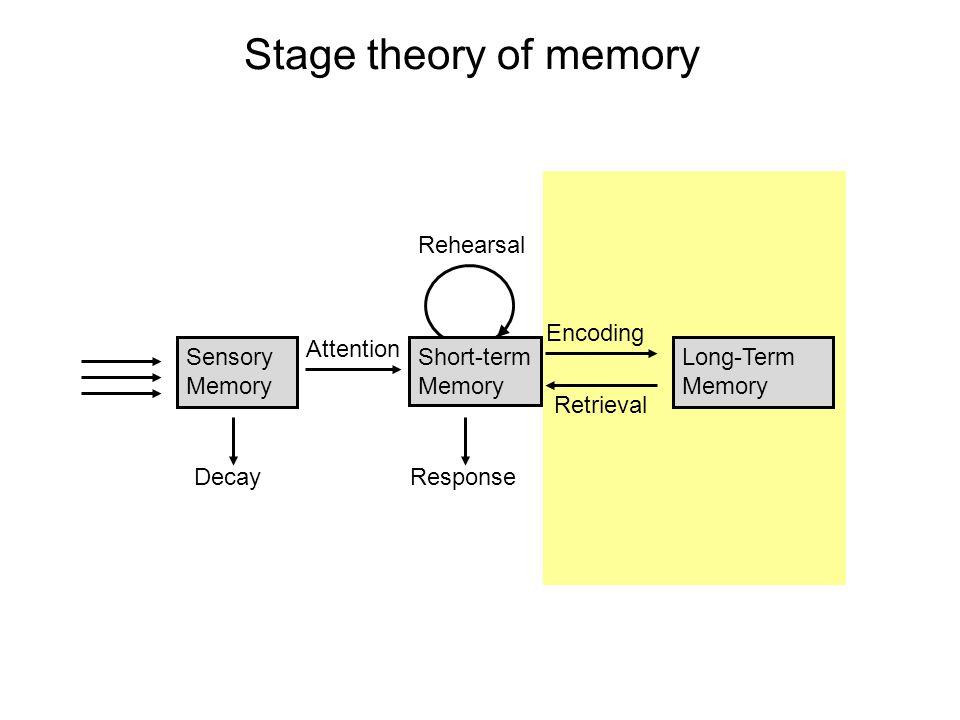 Stage theory of memory Sensory Memory Decay Short-term Memory Response Rehearsal Encoding Retrieval Long-Term Memory Attention