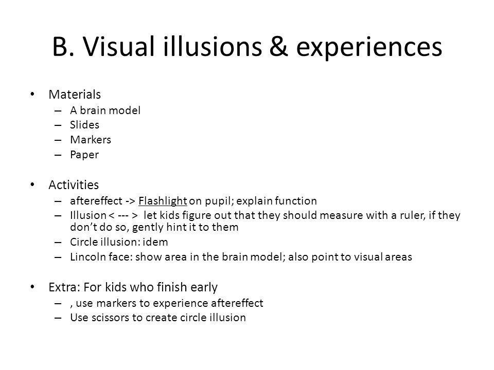 B. Visual illusions & experiences Materials – A brain model – Slides – Markers – Paper Activities – aftereffect -> Flashlight on pupil; explain functi