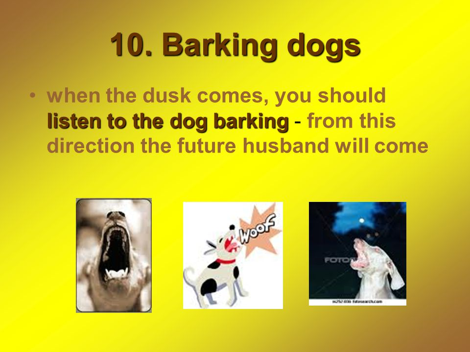 10. Barking dogs when the dusk comes, you should listen to the dog barking - from this direction the future husband will come