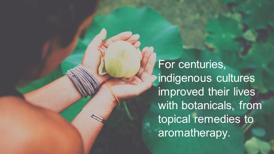 For centuries, indigenous cultures improved their lives with botanicals, from topical remedies to aromatherapy.