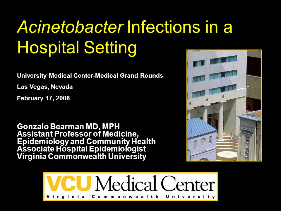Acinetobacter outbreaks 1977-2000 Villegas M, Hartstein A.