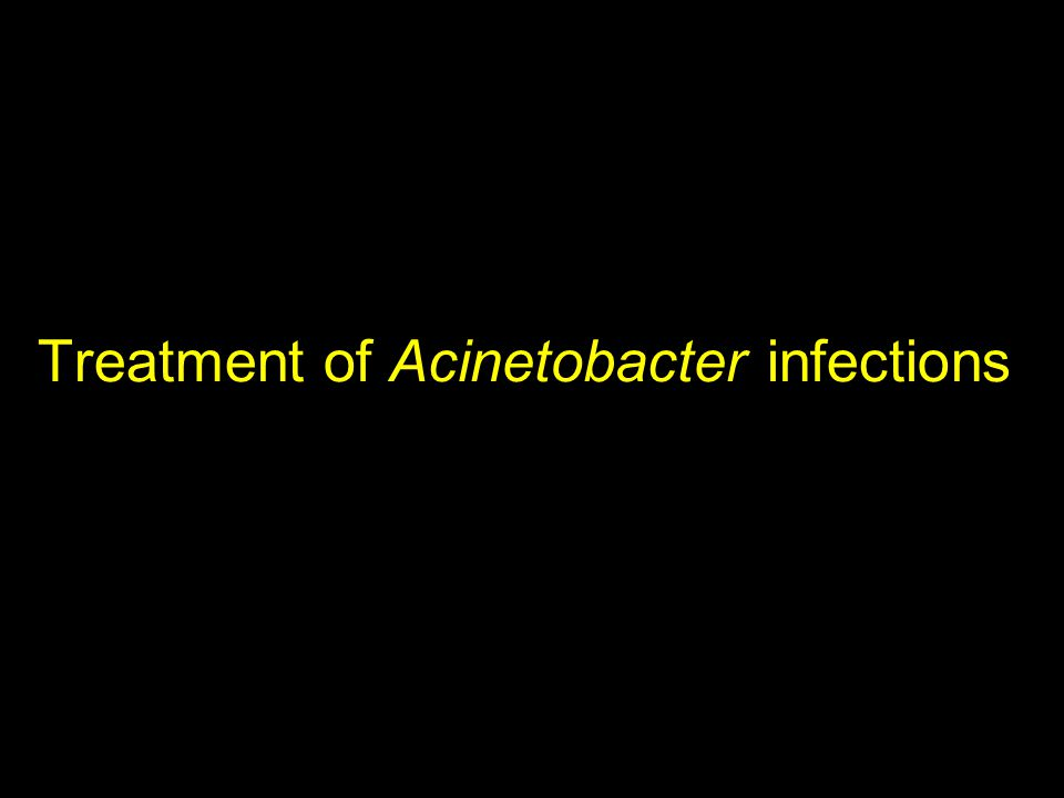 Treatment of Acinetobacter infections