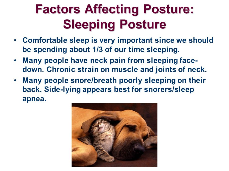 Factors Affecting Posture: Sleeping Posture Comfortable sleep is very important since we should be spending about 1/3 of our time sleeping. Many peopl
