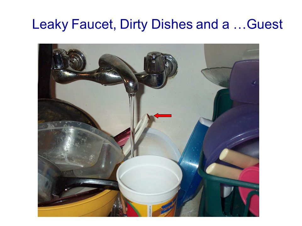 Leaky Faucet, Dirty Dishes and a …Guest