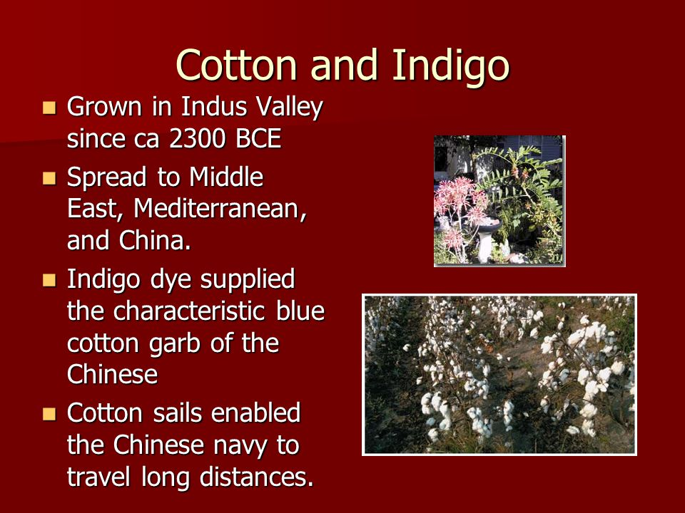 Cotton and Indigo Grown in Indus Valley since ca 2300 BCE Grown in Indus Valley since ca 2300 BCE Spread to Middle East, Mediterranean, and China.