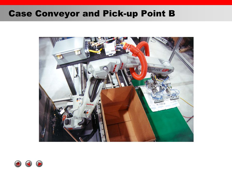 Case Conveyor and Pick-up Point B