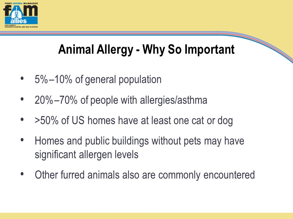5%–10% of general population 20%–70% of people with allergies/asthma >50% of US homes have at least one cat or dog Homes and public buildings without pets may have significant allergen levels Other furred animals also are commonly encountered Animal Allergy - Why So Important