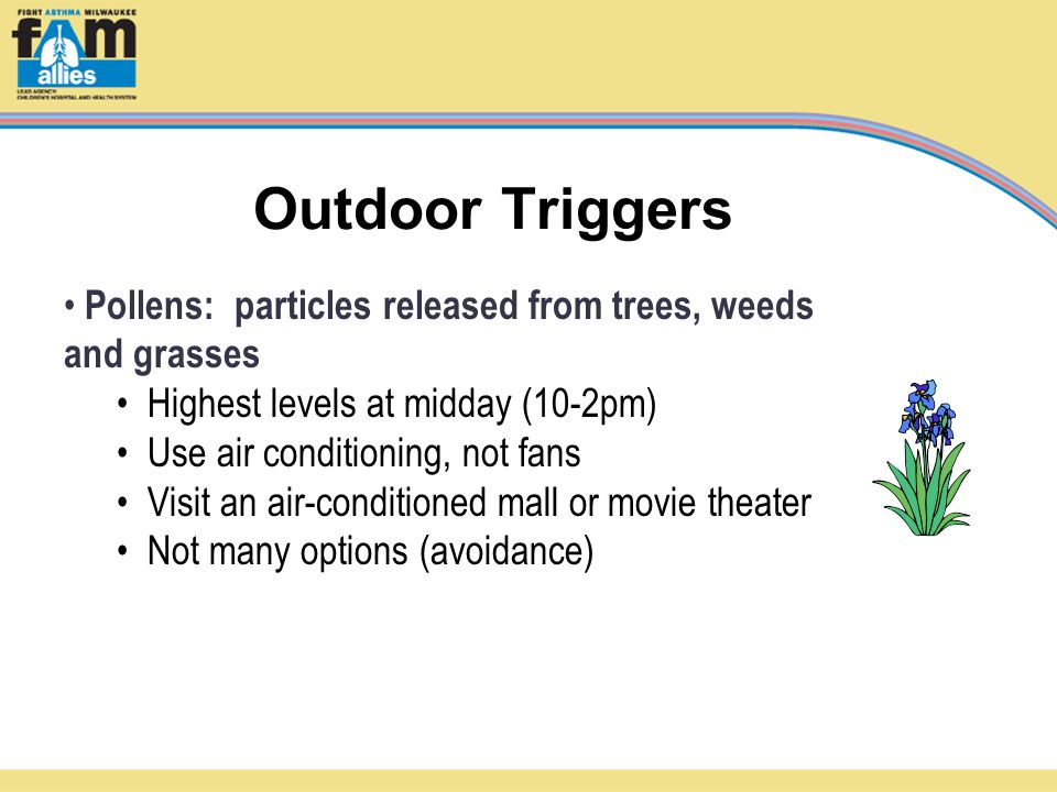 Outdoor Triggers Pollens: particles released from trees, weeds and grasses Highest levels at midday (10-2pm) Use air conditioning, not fans Visit an air-conditioned mall or movie theater Not many options (avoidance)