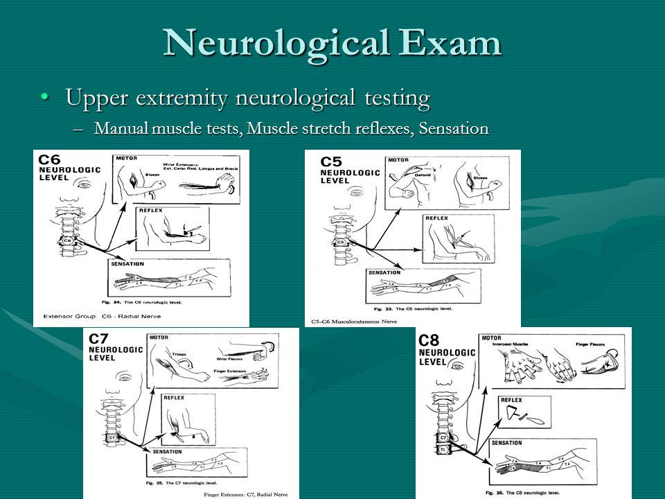 Neurological Exam Upper extremity neurological testingUpper extremity neurological testing –Manual muscle tests, Muscle stretch reflexes, Sensation