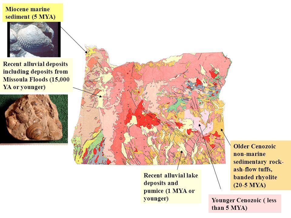 Older Cenozoic non-marine sedimentary rock- ash-flow tuffs, banded rhyolite (20-5 MYA) Recent alluvial lake deposits and pumice (1 MYA or younger) Rec