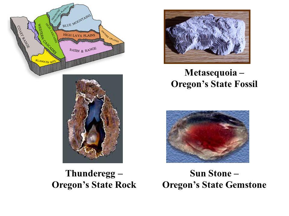Metasequoia – Oregon's State Fossil Sun Stone – Oregon's State Gemstone Thunderegg – Oregon's State Rock