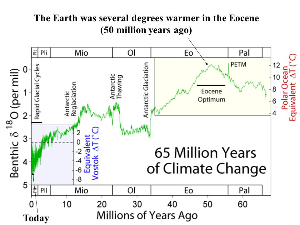 The Earth was several degrees warmer in the Eocene (50 million years ago) Today
