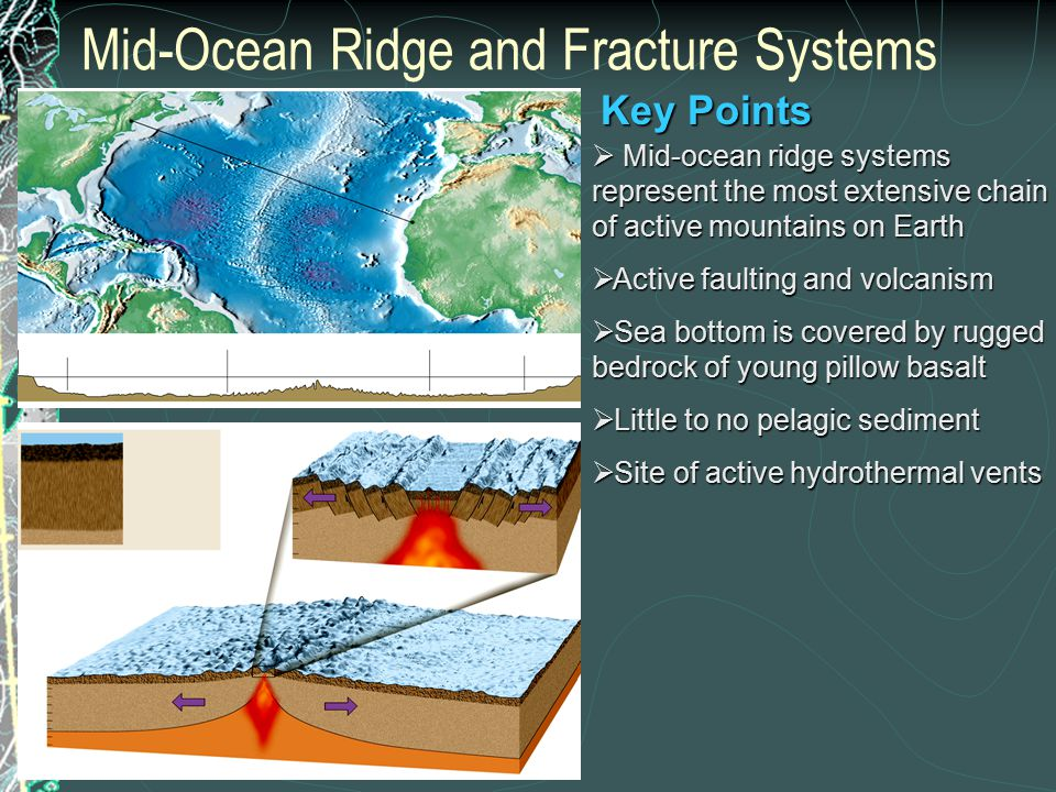 Mid-Ocean Ridge and Fracture Systems  Mid-ocean ridge systems represent the most extensive chain of active mountains on Earth  Active faulting and volcanism  Sea bottom is covered by rugged bedrock of young pillow basalt  Little to no pelagic sediment  Site of active hydrothermal vents Key Points